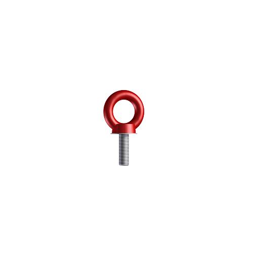 Śruba z uchem - RGS